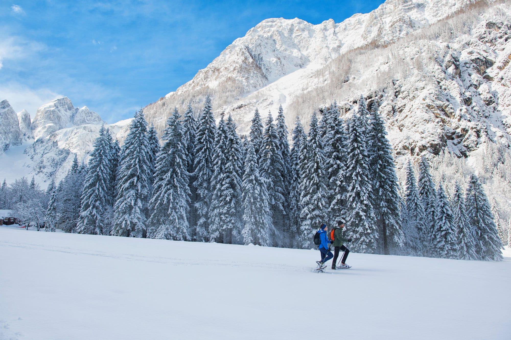 course et activités hiver