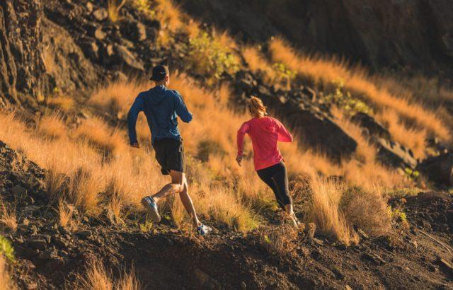 Guide des nouveautés Trail :